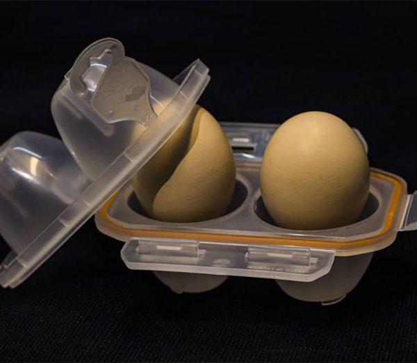 قیمت جا تخممرغی